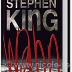 Cover: Stephen King, Wahn