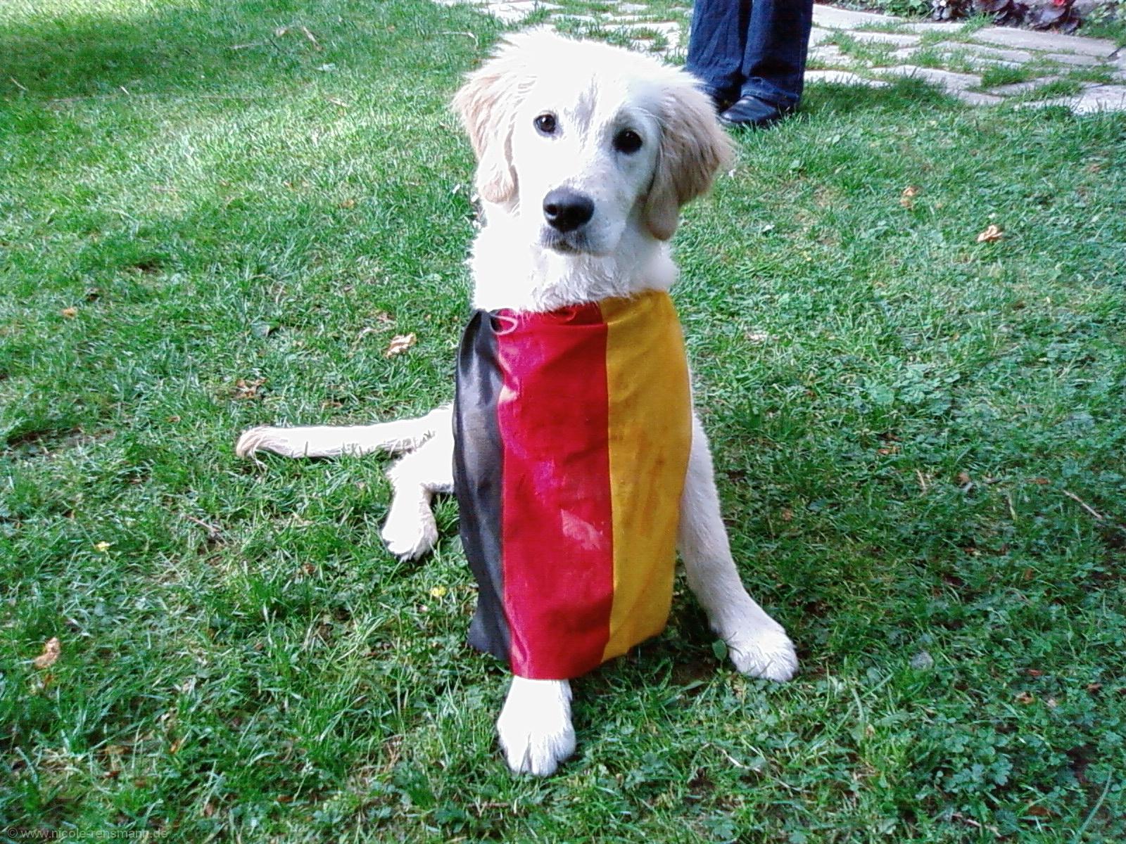 Lola ist für Deutschland