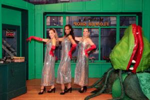 Die drei Straßenmädels  - hier am Ende des Musicals