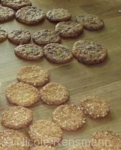 Choco-Cookies & Haferflocken-Kokos-Taler
